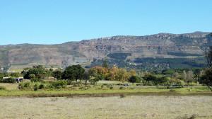 Bergvliet2